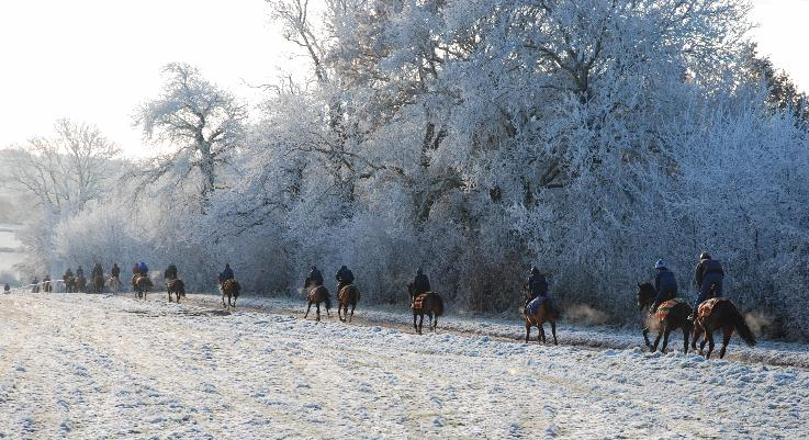 Frosty_String_gallops_081210web